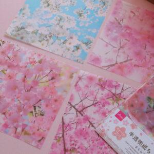 桜 ディスプレイ 100均