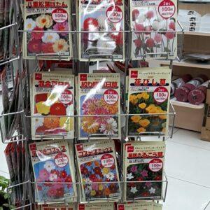 ダイソー 花の種 2021