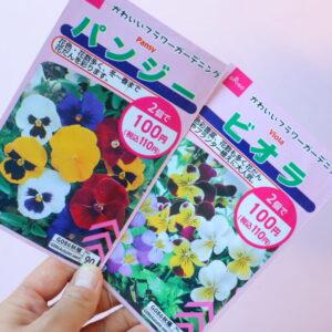 ダイソー 花の種
