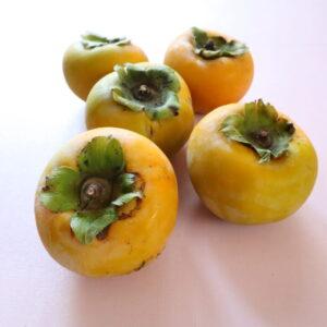 柿 保存方法